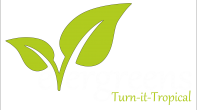 Evergreens – Turn It Tropical